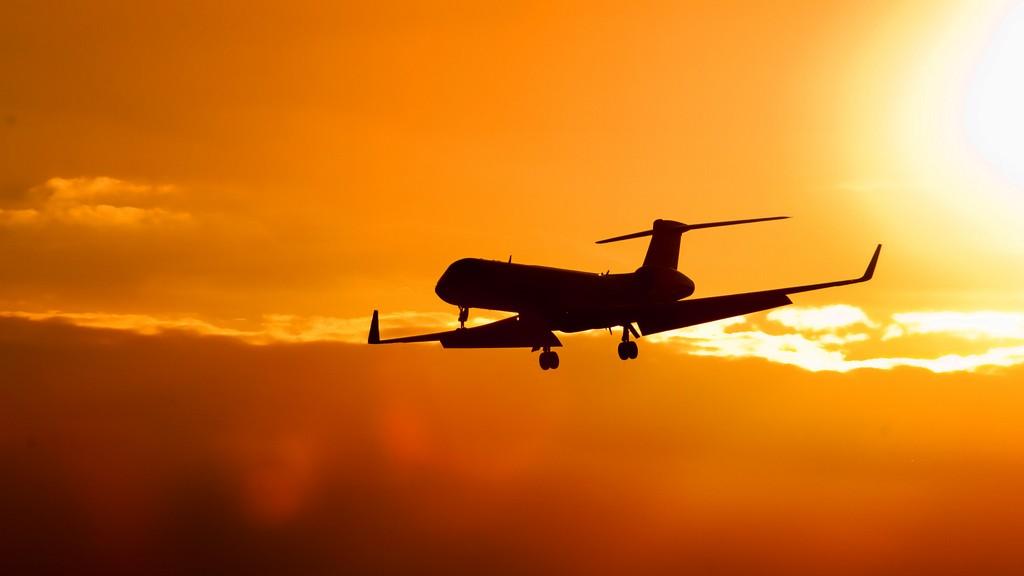 teama de zbor
